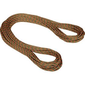 Mammut 8.0 Alpine Dry Rope 70m, marrón/naranja